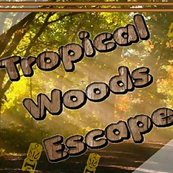 Tropical Woods Escape